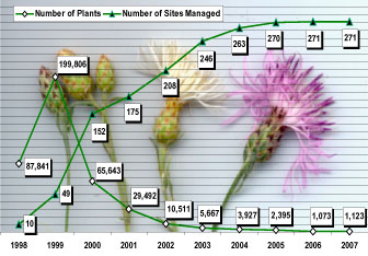 Number of knapweed plants dug and number of sites managed, 1998-2007