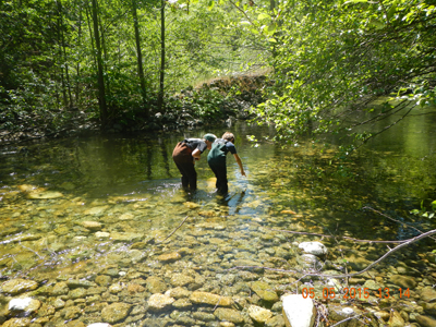 Watershed Ed students at Nordheimer Creek